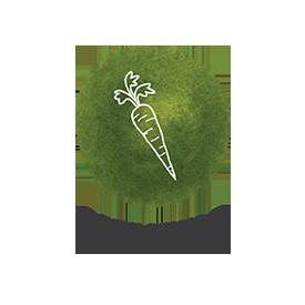 NewIcon-Lifestyle
